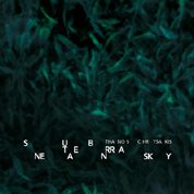 SUBTERRANEAN SKY cd cover